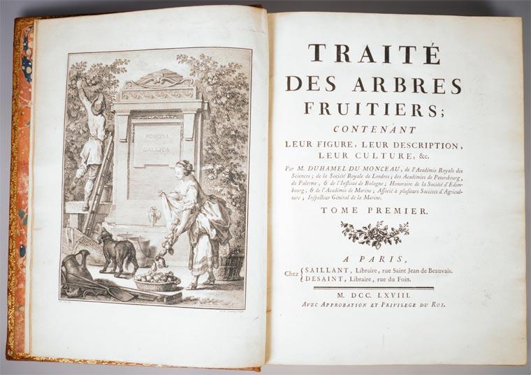 Traktat o voćkama